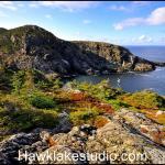 Biscayne Cove  , NFLD