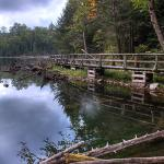 Heron Lake Boardwalk